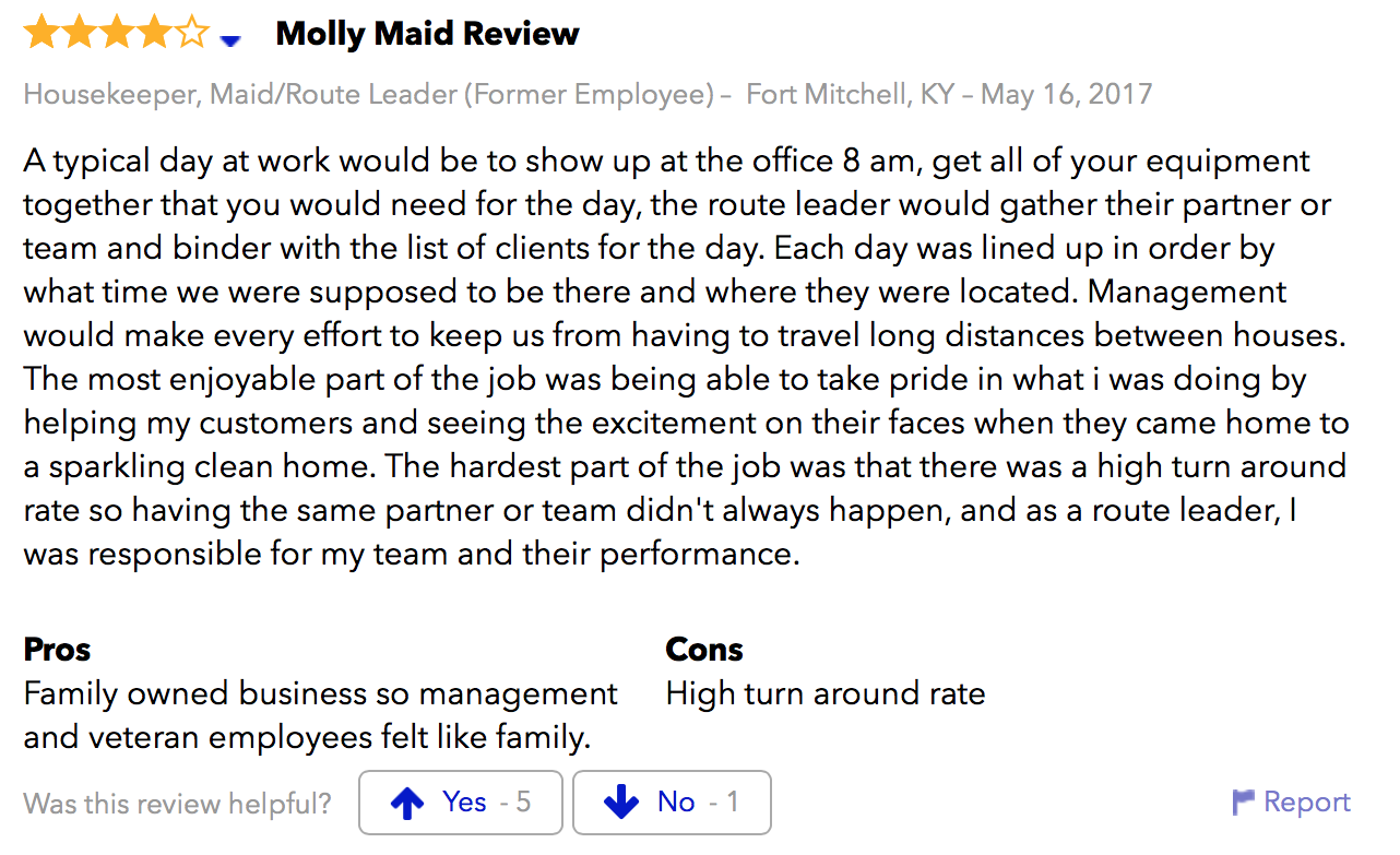 Molly Maids good review.png